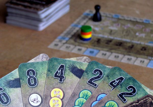Dominant Species: Card Game - game is ready