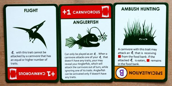 Evolution Origin of Species: Time to Fly - cards