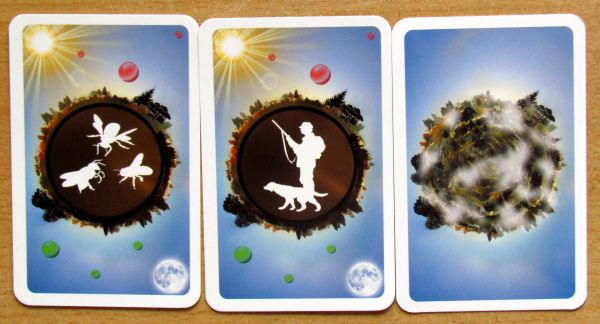 Food Chain - cards