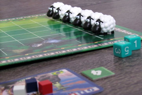 The Sheep Race - game is ready