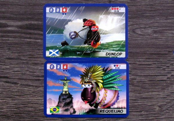 The Sheep Race - cards